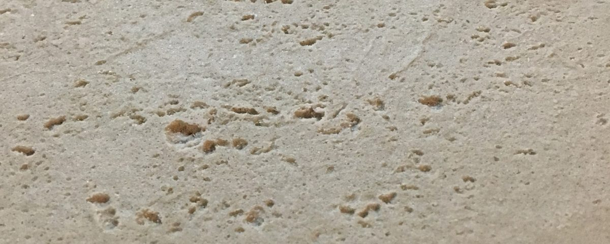 Innerspace Cheshire - Travertine