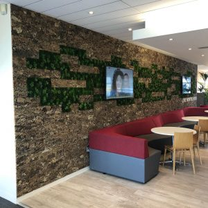Innerspace Cheshire - Moss wall & Cork bark wall - SIG