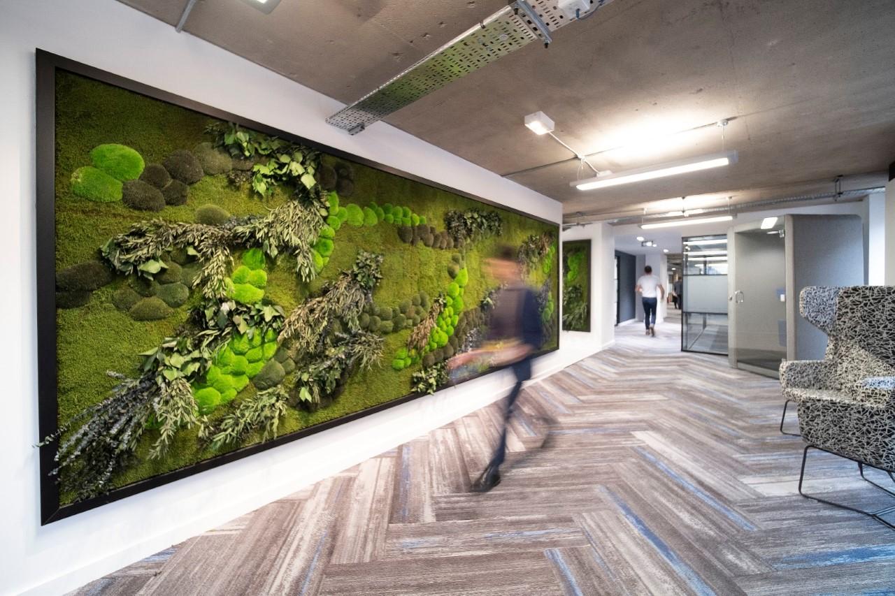NATUREMOSS & NATUREVERDE - Moss & Foliage - Landscape & Jungle