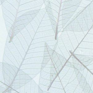Innerspace Cheshire - Resin - Leaves