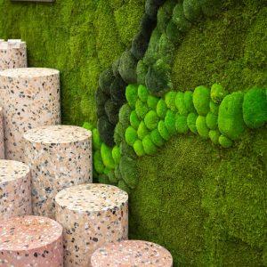 NATUREMOSS - Moss - Landscape