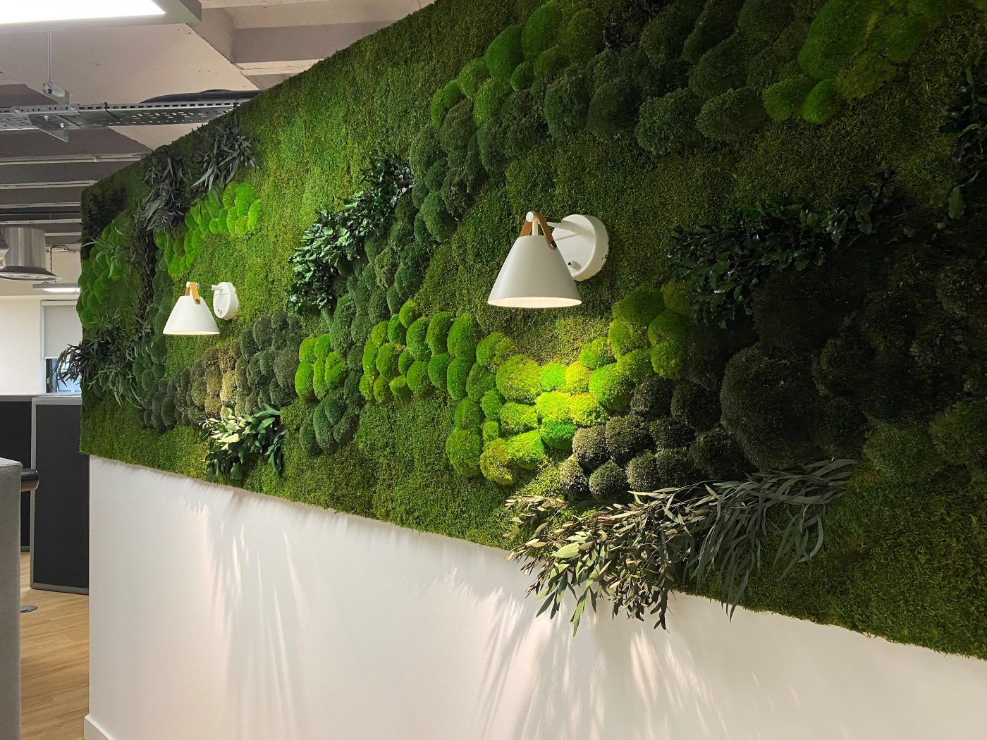 Innerspace Cheshire - Green Wall - Foliage - Plants