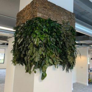 NATUREVERDE - Foliage & Bark