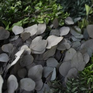 NATUREVERDE - Foliage - Jungle