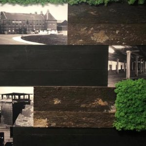 Innerspace Cheshire - Moss, bark and charred timber