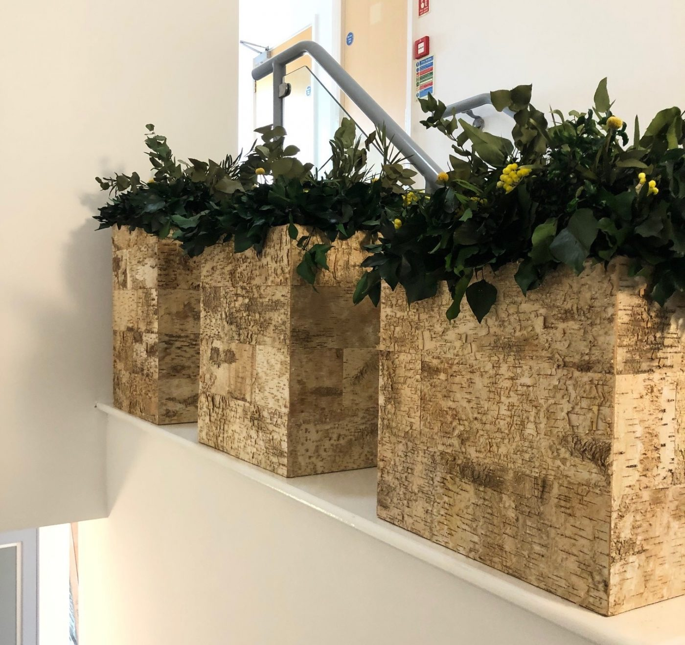 Innerspace Cheshire - Natureverde - Foliage - Planters