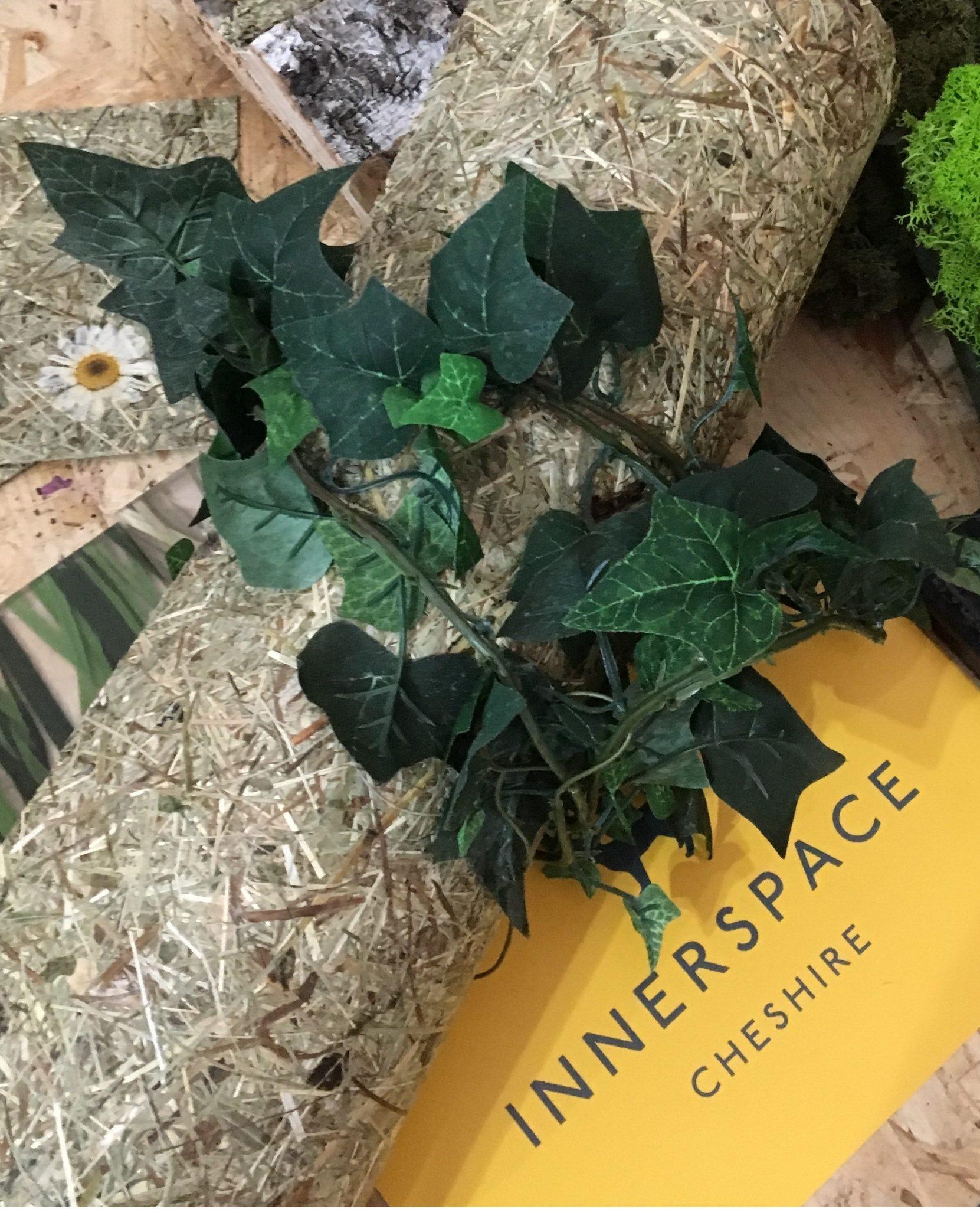 Innerspace Cheshire - Biophilic