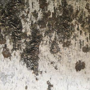 Innerspace Cheshire Birch Wall Panel