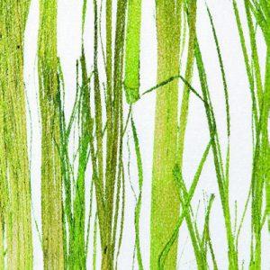 Innerspace Cheshire - Resin - Thai Green