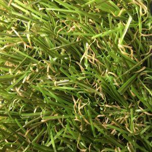 Innerspace Cheshire - Grass - 4